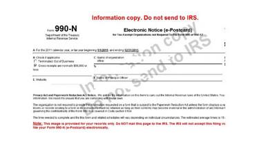 IRS 990 N Form